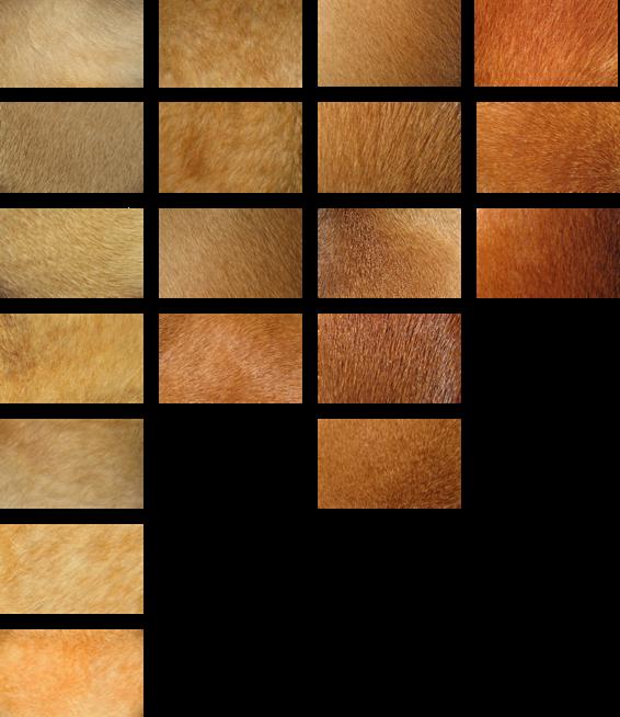 Color-Range