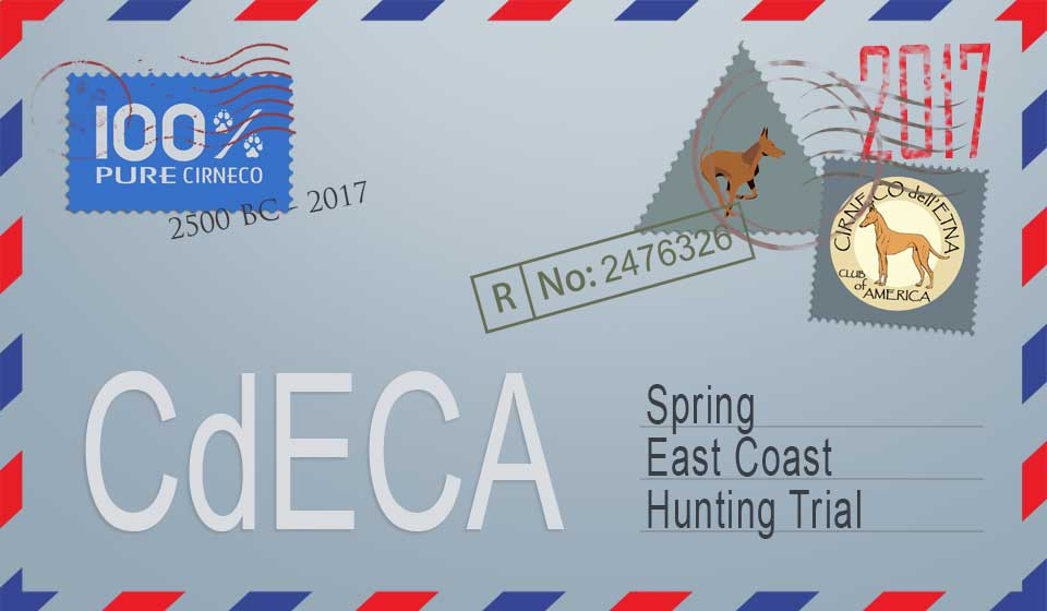CdECA Spring East Coast Hunting Trial