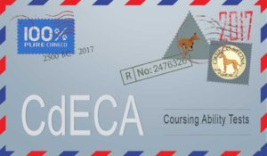CdECA Premium List - Coursing Ability Tests @ Conroe   Texas   United States
